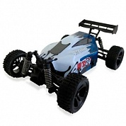 HSP Electric Powered Buggy BT24 4WD RTR (1:24)