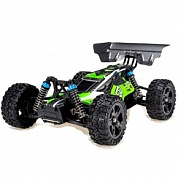 Remo Hobby Dingo 4WD RTR Buggy (1:16)